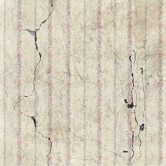 Aardbeving Schade Juni 2021